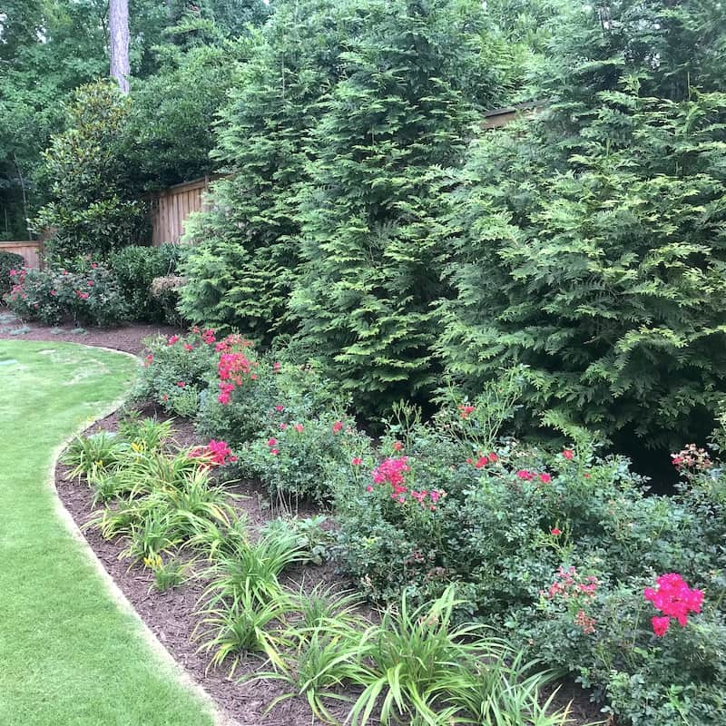 justgreen lawn care pruning and weeding
