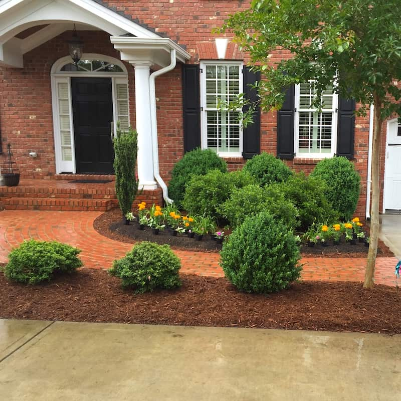 justgreen lawn care shrub and turf