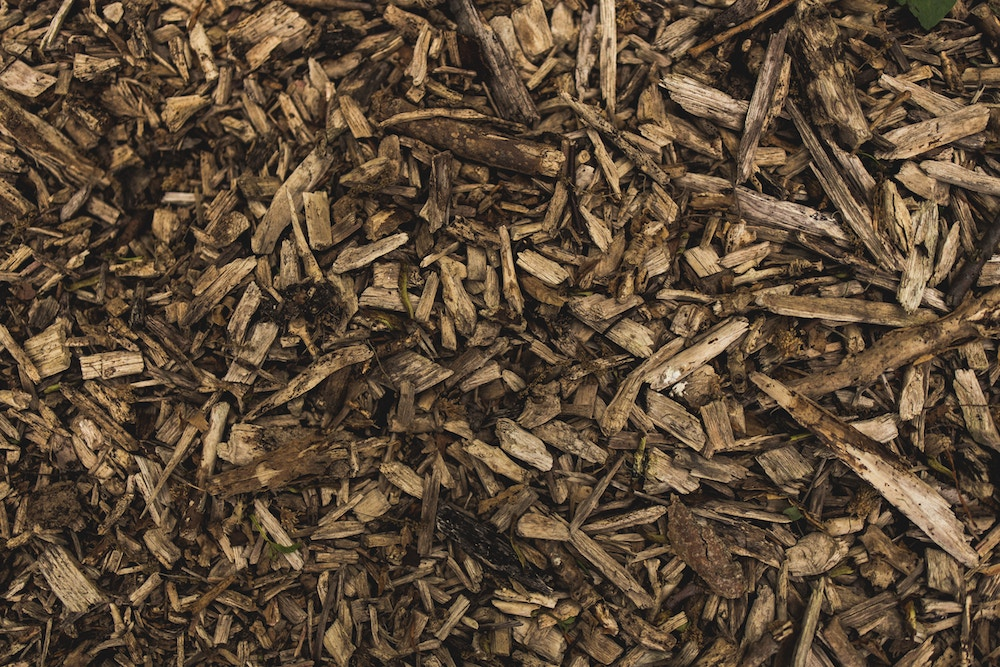 close up of mulch wood chips